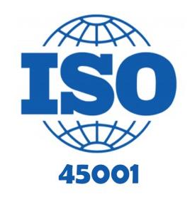 ISO 45001 İŞ SAĞLIĞI GÜVENLİĞİ TEMEL VE İÇ DENETÇİ EĞİTİMİ